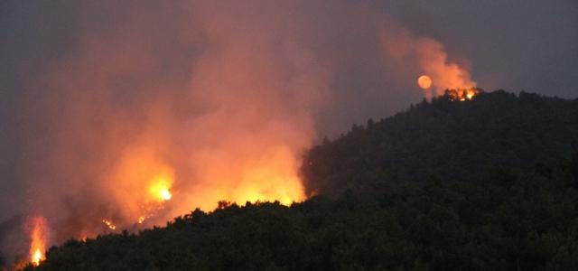 Arsuz'daki Orman Yangını Kontrol Altında