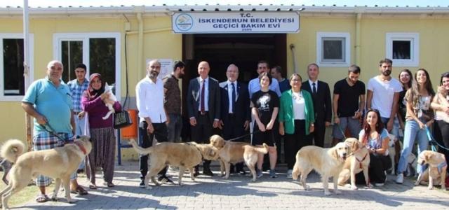 Başkan Tosyalı; 'Hayvanları Korumak Herkesin Görevidir'