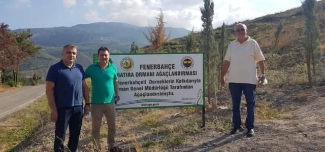 Fenerbahçeliler Derneğinin Ektiği Fidanlar Filizlendi
