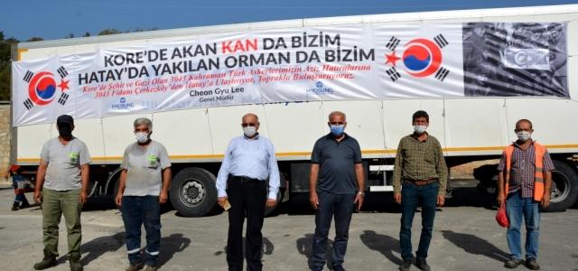 Güney Kore'li Firmadan Hatay'a 3043 Fidan
