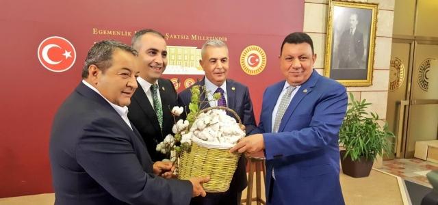 MHP Pamuk Üreticilerinin Sorunlarını Meclise Taşıdı