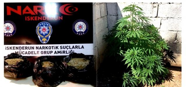 Uyuşturcu Operasyonlarında: 12 Gözaltı