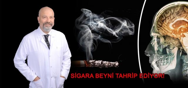 Sigara Beyni Tahrip Ediyor!