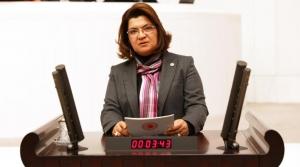 CHP'li Şahin İnfaz Yasasını Değerlendirdi