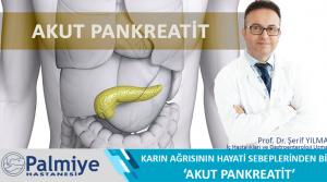 Karın Ağrısının Hayati Sebeplerinden Biri  'Akut Pankreatit'