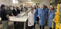 Afrin'e Yemek Hizmeti Veren Şirkete Denetim