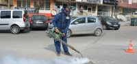 Büyükşehir Ekipleri Haşere İle Mücadele'de Hız Kesmiyor