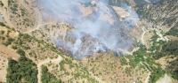 Habib-İ Neccar Dağı'nda Orman Yangını