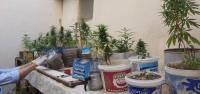 İskenderun'da  Uyuşturucuya Taviz Yok
