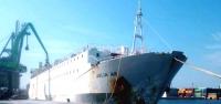 İzmir'den Dönen Angus Gemisi Rotayı İskenderun'a Çevirdi