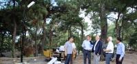 Mimar Sinan Parkı'na Aydınlatma ve Peyzaj Çalışması