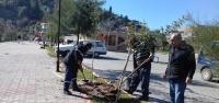 Park-Bahçe Ekipleri Daha Yeşil Ve Güzel Bir İskenderun Çalışıyor