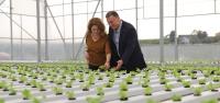'Topraksız Tarımla Kazanan Hatay Olacak'