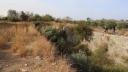 Payas'ın Tarihi Çehresi Bekir Altan'la Değişiyor